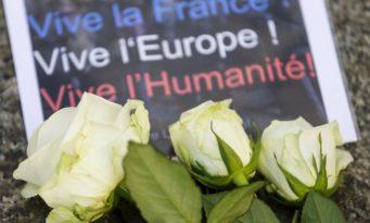 ViveLaFrance_Roses-1016x675